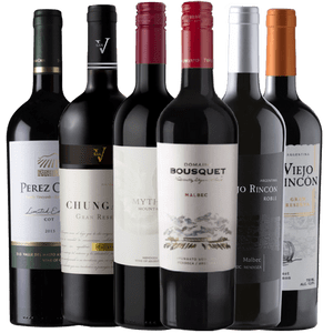 Boxfriends Malbec Mix 6 Garrafas